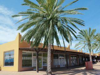 Local en venta en Oliva (la) de 194  m²