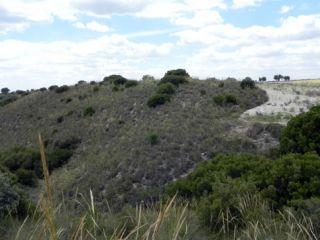Terreno en venta en Morata De Tajuña de 10992  m²