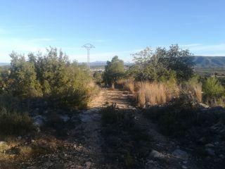 Terreno en La Sotarraña, Chella, Valencia 3