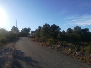 Terreno en La Sotarraña, Chella, Valencia 4