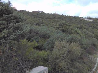 Terreno en venta en Torremocha del Jarama 6