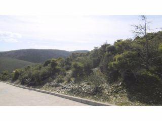 Terreno en venta en Torremocha del Jarama 12