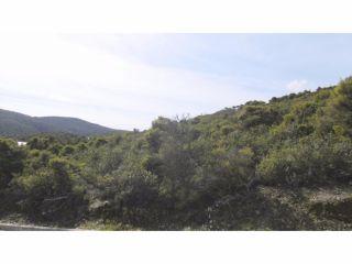 Terreno en venta en Torremocha del Jarama 13