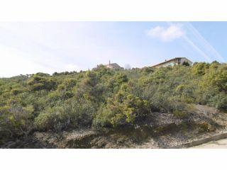 Terreno en venta en Torremocha del Jarama 15